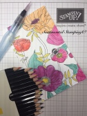 between-the-lines-watercolour-pencils