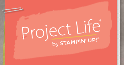 project-life-header