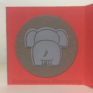 A little wild elephant back