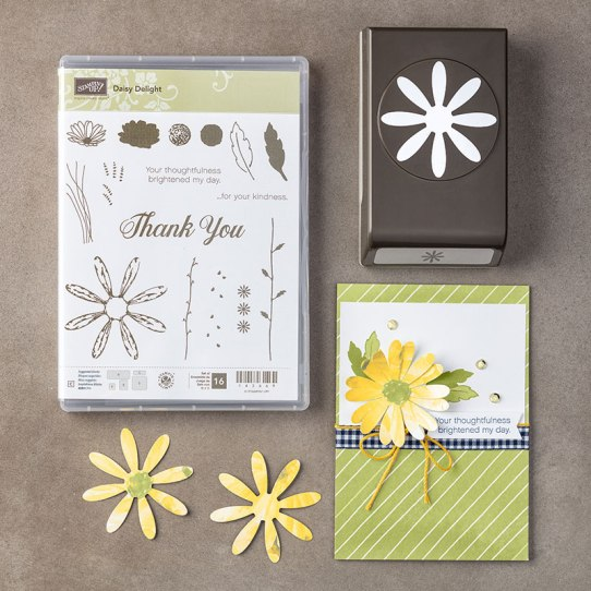 Daisy Delight bundle