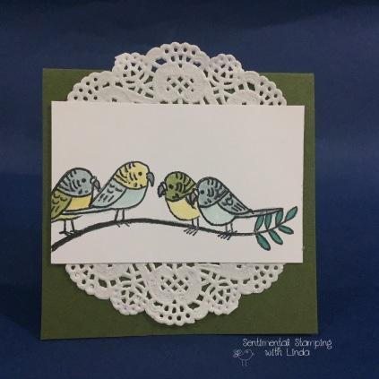 bird banter gift card