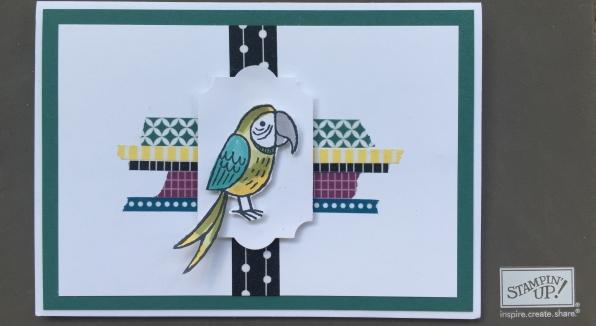 bird-banter-washi-tape.jpg